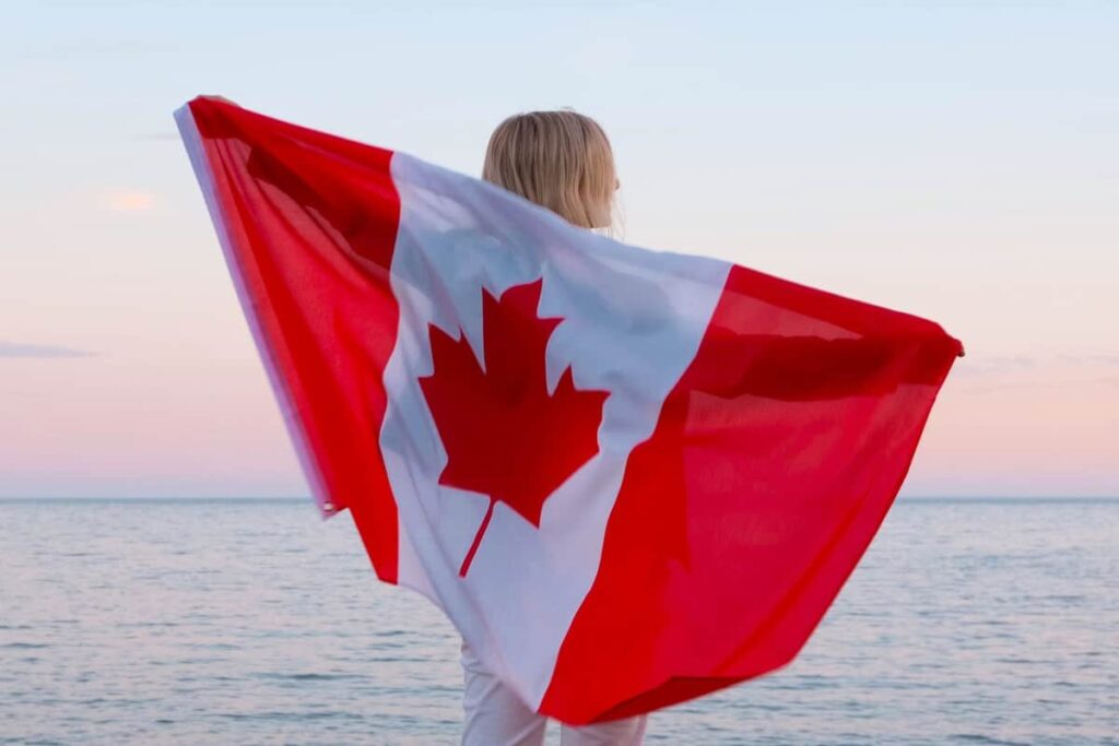 Can I Apply For Canada Immigration On My Own?